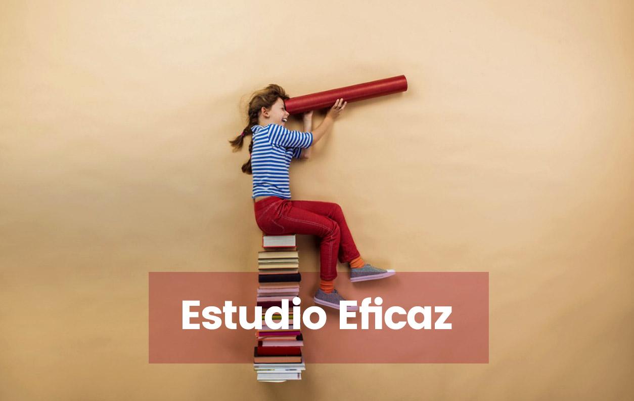Estudio eficaz Vitoria-Gasteiz